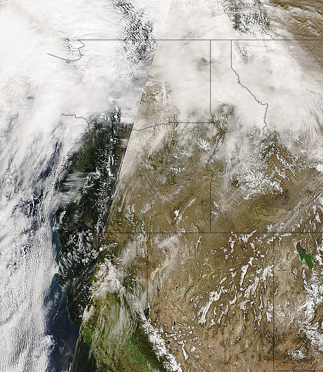 True color MODIS near-real-time satellite imagery